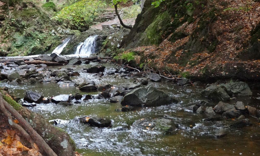 Unterwegs in der Heide - Auf zum Priesnitz-Wasserfall