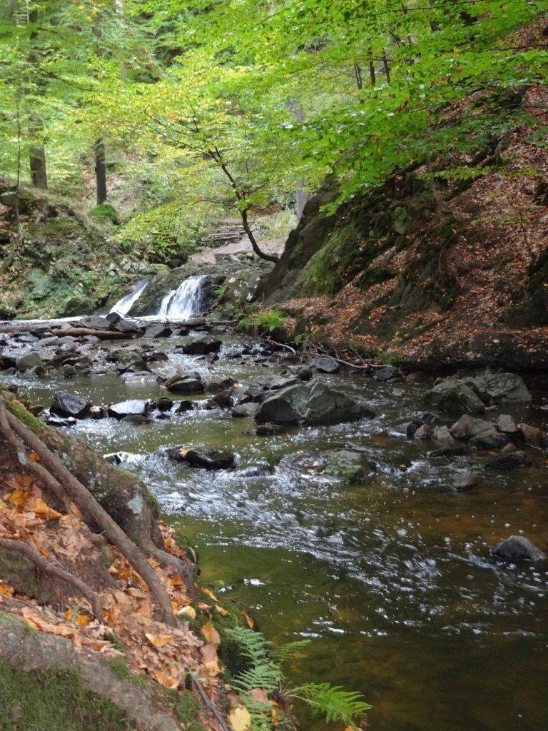 Prießnitz-Wasserfall in der Dresdner Heide