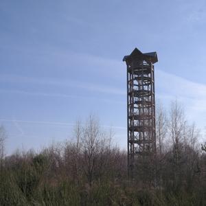 Unterwegs in Sachsens größtem Naturschutzgebiet - Die Königsbrücker Heide