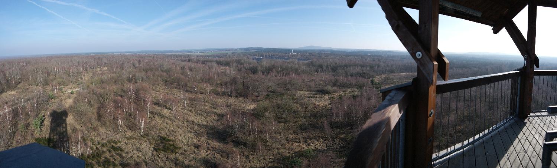 Unterwegs in Sachsens größtem Naturschutzgebiet – Die Königsbrücker Heide