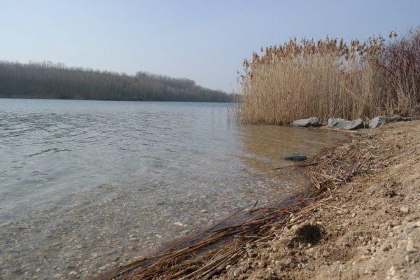 Am Kulkwitzer See
