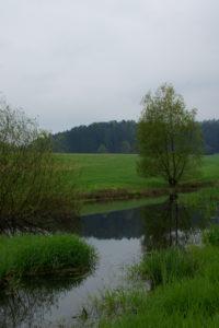 Auf dem Weg zum Kleinhennersdorfer Stein