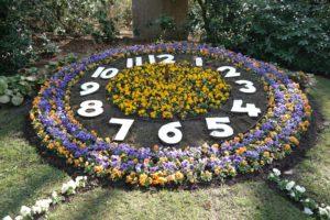 Blumenuhr im Stadtpark Hainichen