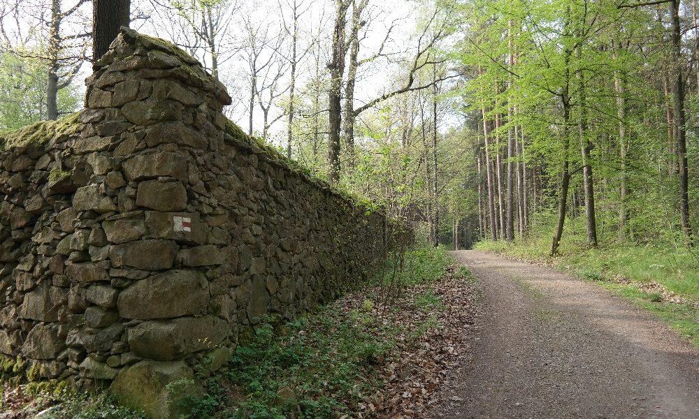 Eine Wanderung durch Langebrück und die nördliche Dresdner Heide