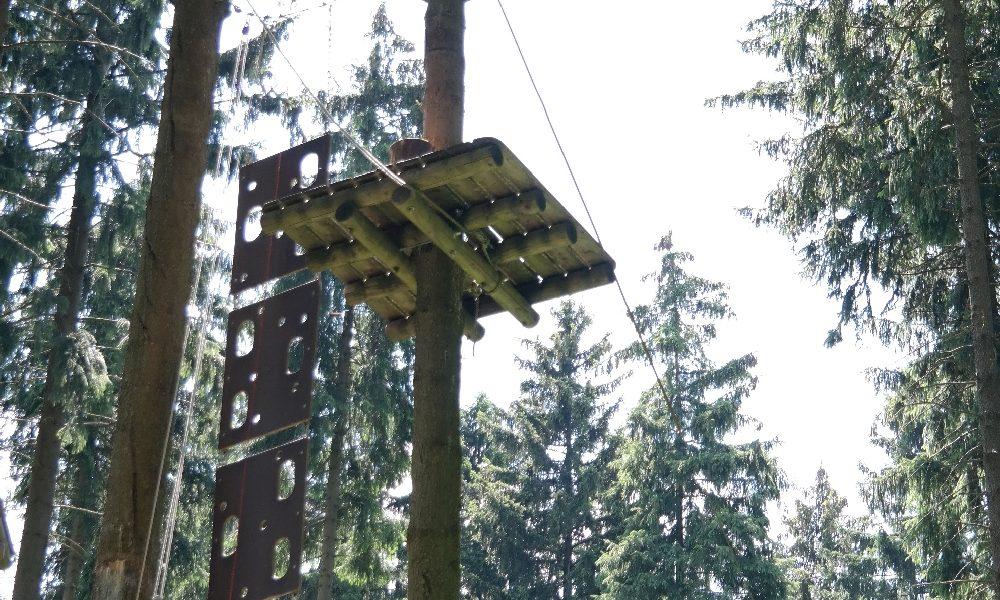 Klettern in luftigen Höhen - Sachsens Kletterwälder