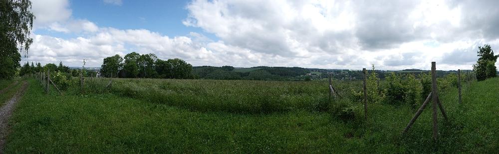 Panorama vom Vogtland