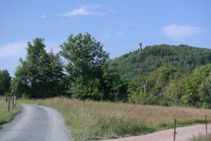 Viele Wege führen auf den Geisingberg