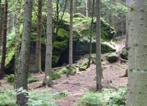 Wildbretkeller oder Wildbrethöhle am Großen Zschirnstein
