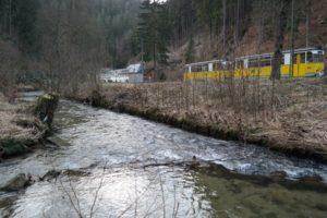Die Kirnitzsch mit der Kirnitzschtalbahn