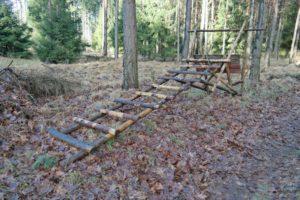 """""""Liegestand"""" in der Dresdner Heide"""