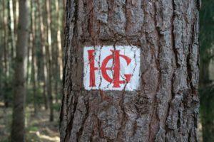 HG-Weg in der Dresdner Heide