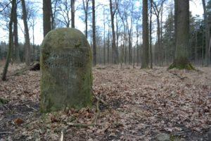 Liegauer Saugarten in der Dresdner Heide