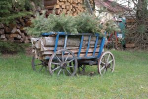 Handwagen in Hinterhermsdorf