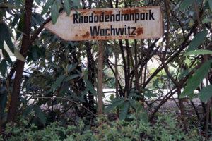 Am Rhododendronpark Dresden-Wachwitz