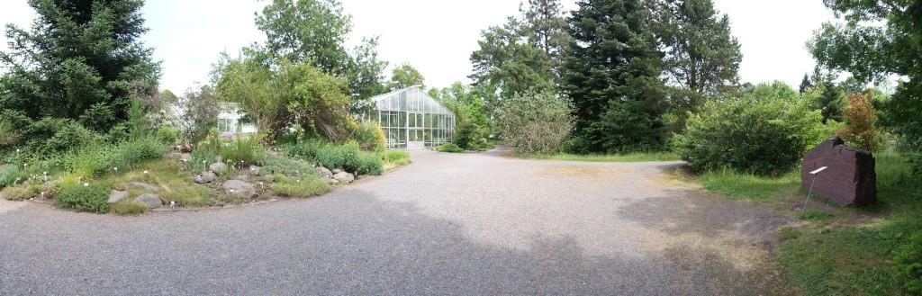 Im Botanischen Garten Dresden