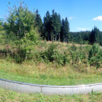 Mit Schwung hinab ins Tal - Sommerrodelbahnen in Sachsen