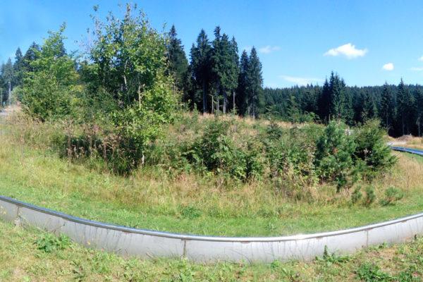 Sommerrodelbahn Mühlleiten in Klingenthal