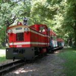 Sachsen für Familien - Meine 10 Highlights für Urlaub mit Kindern in Sachsen
