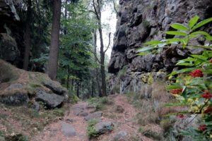 Große Felsengasse bei Oybin