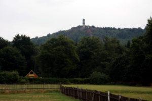 Blick auf den Hochwald mit Aussichtsturm