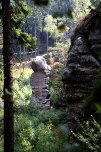 Krumme Tante im Zittauer Gebirge