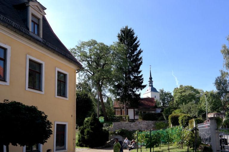 Blick vom Schloss auf die Kirche Maxen