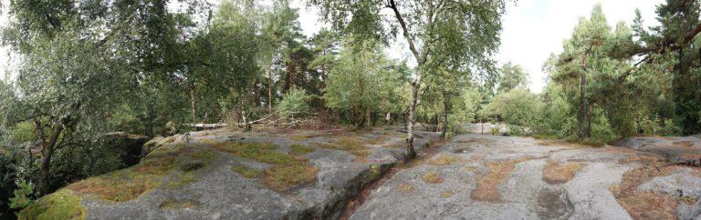 Auf dem Langenhennersdorfer Labyrinth