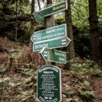 Mit dem Go-Kart unterwegs auf Kartbahnen in Sachsen