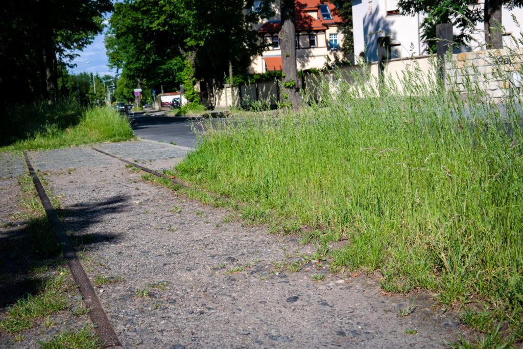 Schienenstrang der Lockwitztalbahn