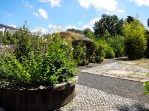 Im Tast- und Duftgarten Leipzig