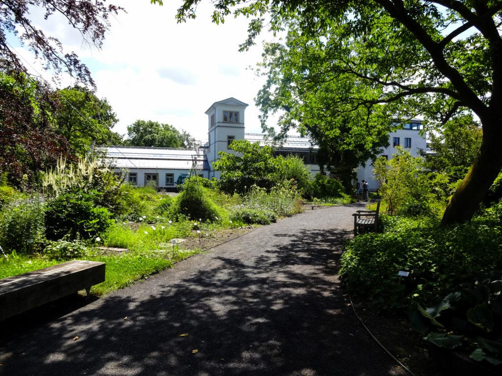 Im Botanischen Garten Leipzig