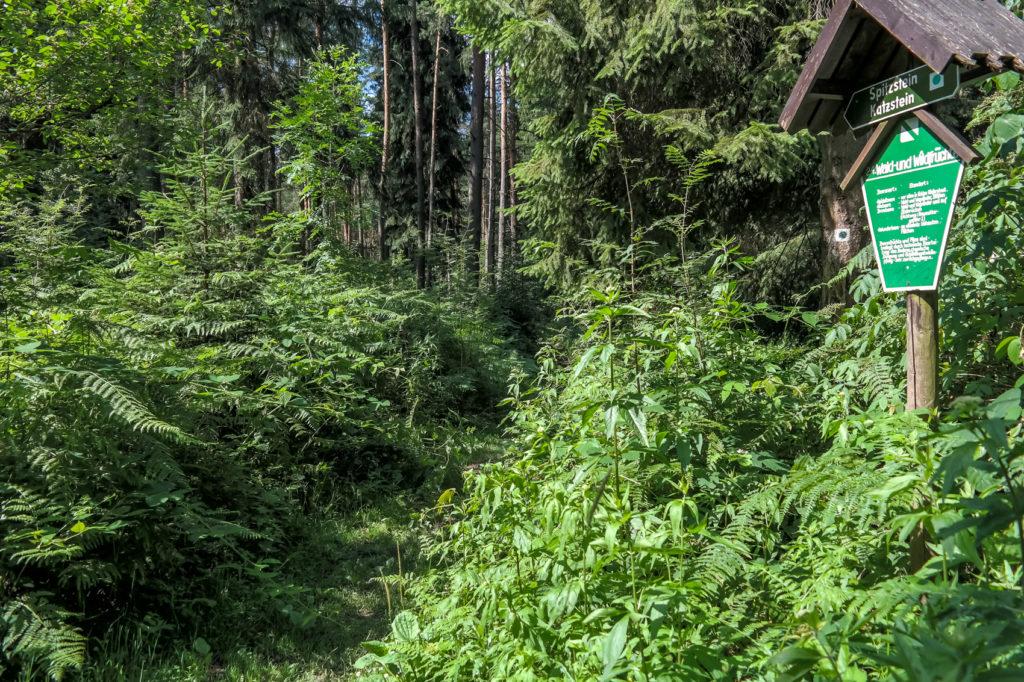 Naturlehrpfad in Cunnersdorf, Sächsische Schweiz