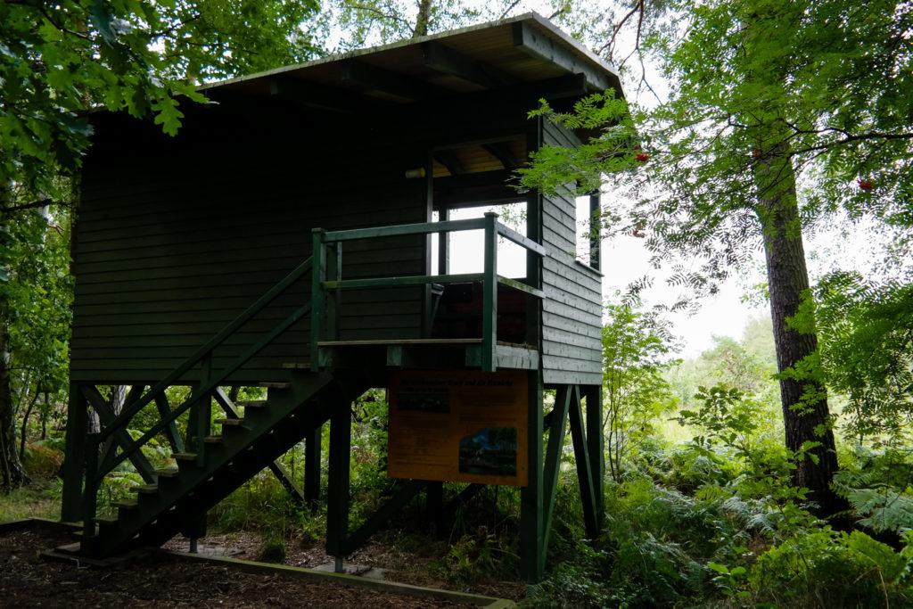 Beobachtungsposten am Wildenhainer Bruch