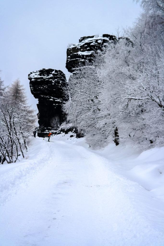 Felsformation auf dem Hohen Schneeberg