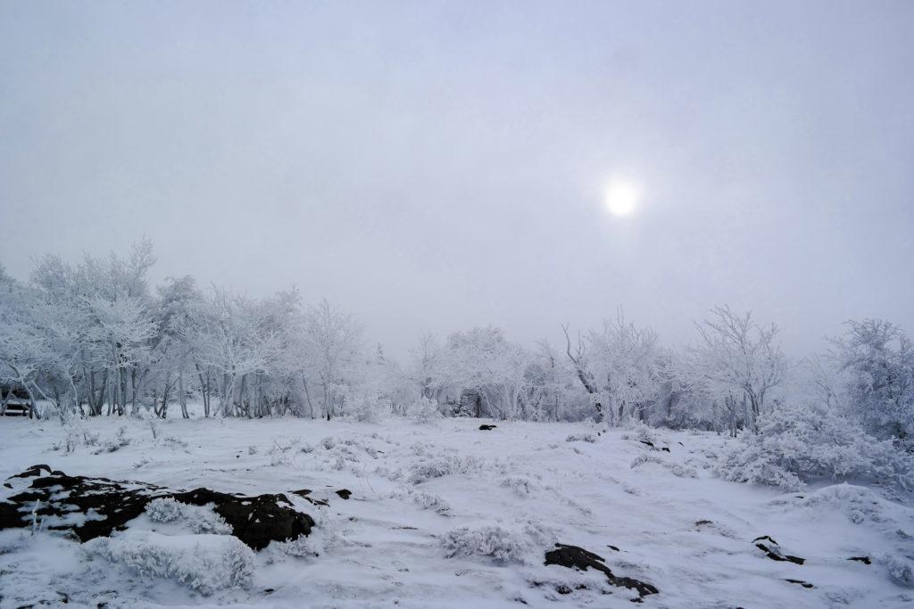 Winterzauber auf dem Hohen Schneeberg