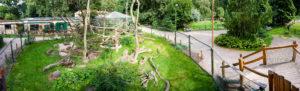 Affengehege im Eilenburger Tierpark