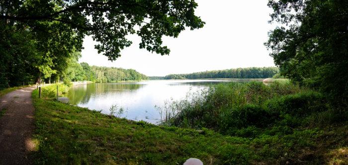 Kirchteich im Wermsdorfer Forst