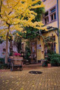 Ein idyllischer Blumenladen in der Kunsthofpassage