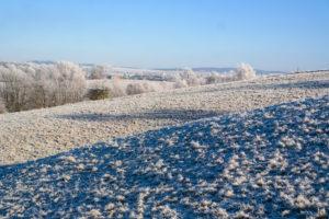 Winterwanderung zur Napoleonschanze bei Hohnstein