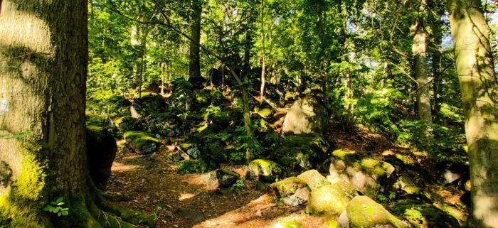 Der Geldkeller auf dem Löbauer Berg