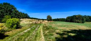 Auf dem Weg zum Rotsteingipfel